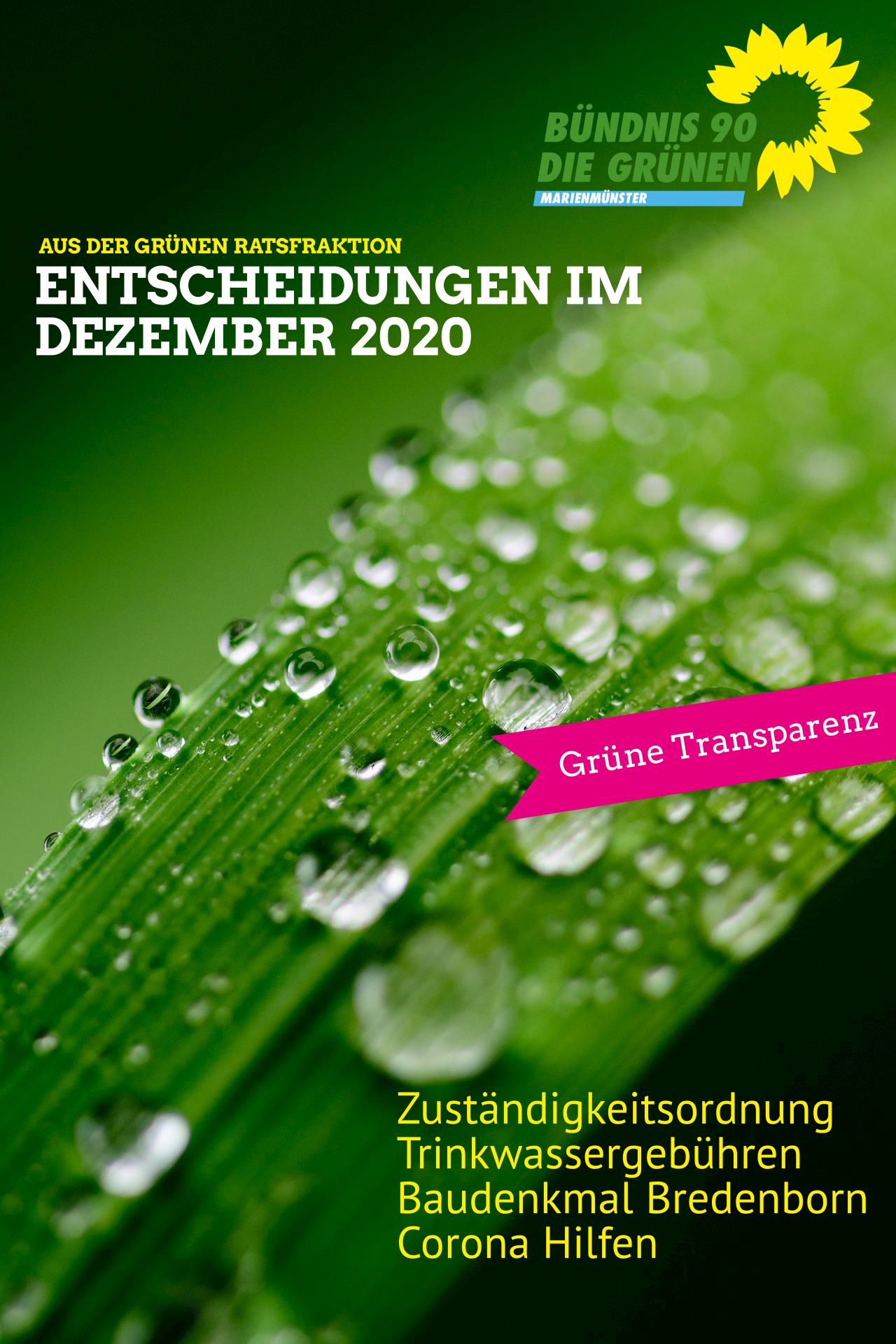 Entscheidungen der Grünen Ratsfraktion im Dezember 2020